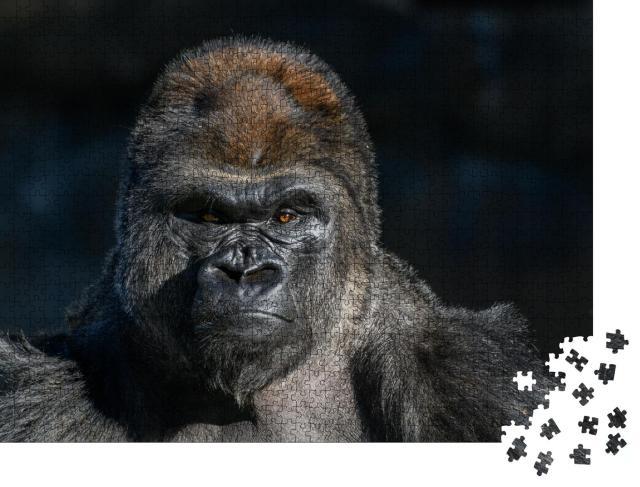 """Puzzle 1000 Teile """"Westlicher Flachlandgorilla mit starkem, wütendem Gesichtsausdruck"""""""