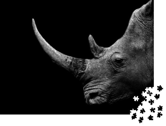 """Puzzle 1000 Teile """"Nashorn, detaillierte Seitenansicht, schwarz-weiß"""""""