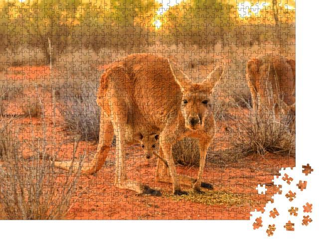 """Puzzle 1000 Teile """"Rotes Känguruweibchen mit einem Jungtier im Beutel"""""""