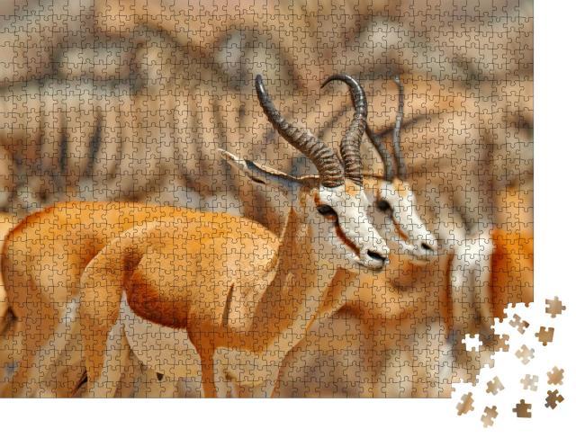 """Puzzle 1000 Teile """"Große Gruppe von Tieren an einem Wasserloch, Namibia"""""""
