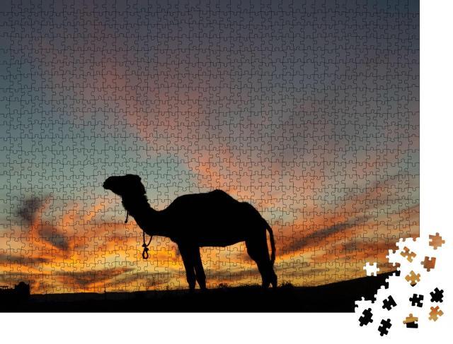 """Puzzle 1000 Teile """"Dromedar-Silhouette an einem schönen Wüstenabend"""""""