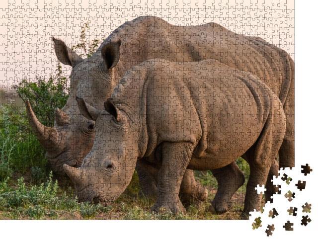 """Puzzle 1000 Teile """"Breitmaulnashorn und Jungtier in Namibia"""""""