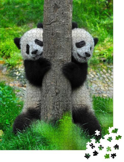 """Puzzle 1000 Teile """"Pandabär-Zwillinge"""""""