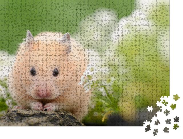 """Puzzle 1000 Teile """"Goldhamster"""""""