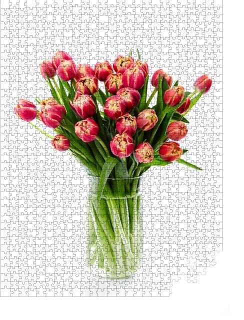 """Puzzle 1000 Teile """"Fotografie von roten Tulpen mit gelbem Rand in einer Glasvase"""""""