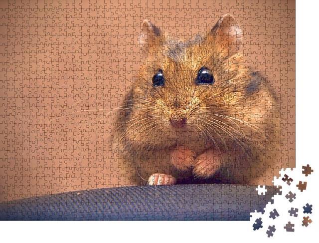 """Puzzle 1000 Teile """"Süßer brauner Hamster"""""""