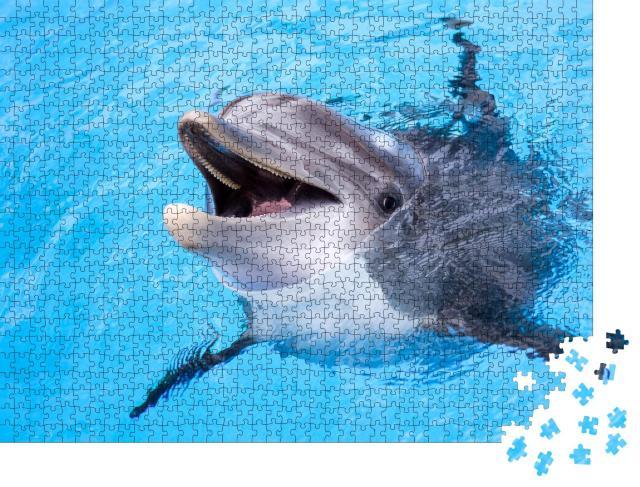 """Puzzle 1000 Teile """"Delphin"""""""