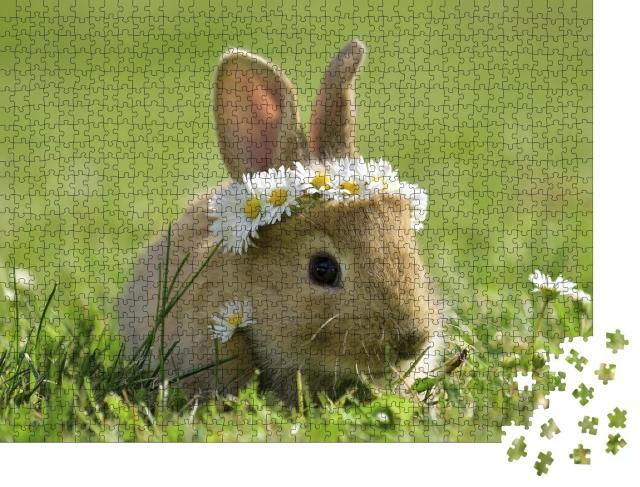 """Puzzle 1000 Teile """"Süßes kleines Kaninchen mit Gänseblümchenkranz"""""""