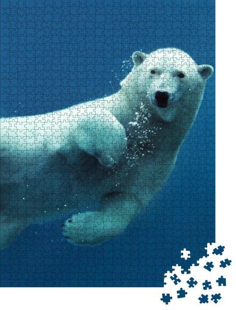 """Puzzle 1000 Teile """"Nahaufnahme eines schwimmenden Eisbären unter Wasser"""""""