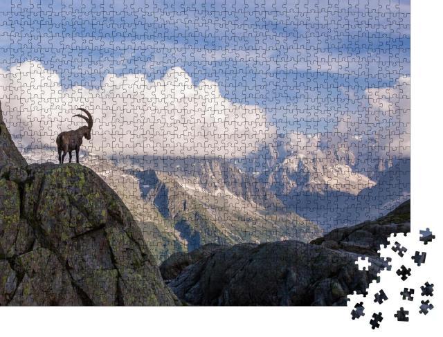 """Puzzle 1000 Teile """"Wilde Steinböcke vor der ikonischen Mont-Blanc-Bergkette an einem Sommertag"""""""