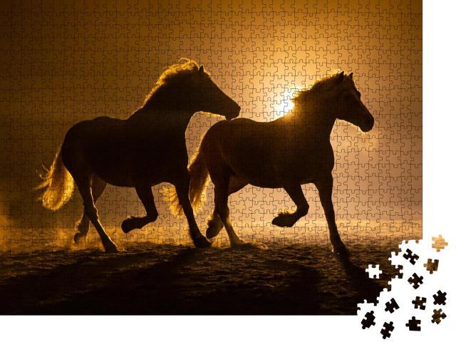 """Puzzle 1000 Teile """"Silhouette zweier galoppierender Haflingerpferde in abendlicher Atmosphäre"""""""