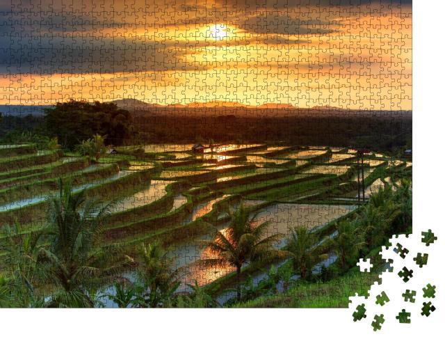 """Puzzle 1000 Teile """"Jatiluwih-Reisterrassen auf Bali bei Sonnenaufgang, Indonesien"""""""
