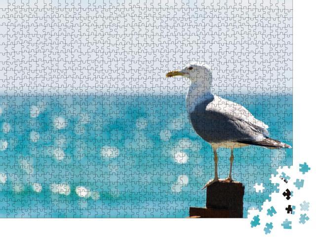"""Puzzle 1000 Teile """"Seemöwe am Meer"""""""
