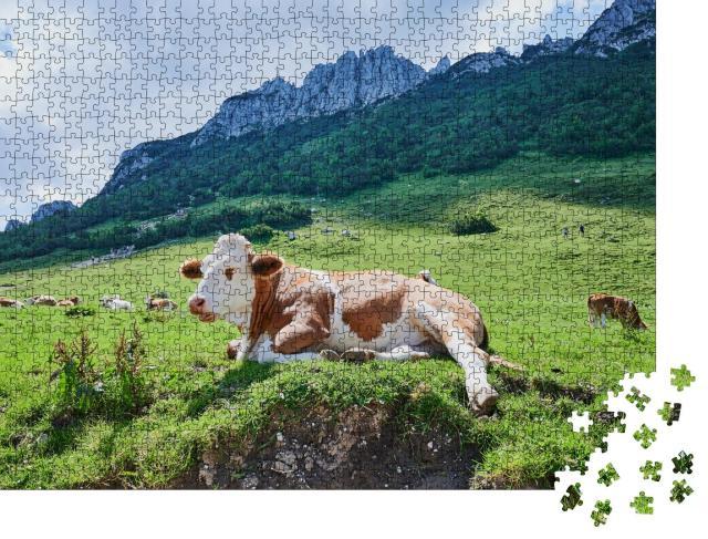 """Puzzle 1000 Teile """"Kuh vor der berühmten Kampenwand, Bayern, Deutschland"""""""