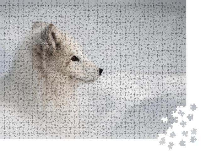 """Puzzle 1000 Teile """"Polarfuchsweibchen wagt sich aus ihrer Schneehöhle heraus"""""""