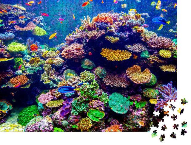 """Puzzle 1000 Teile """"Singapur Aquarium: Korallen und tropische Fische"""""""