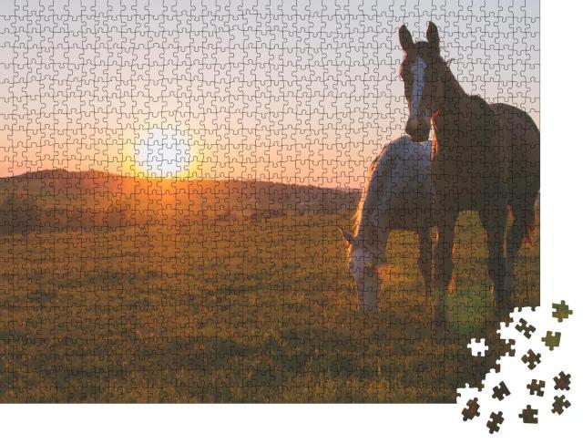 """Puzzle 1000 Teile """"Zwei Pferde im Sonnenuntergang"""""""