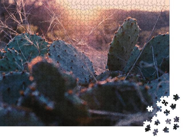 """Puzzle 1000 Teile """"Feigenkaktus im texanischen Sonnenuntergang"""""""
