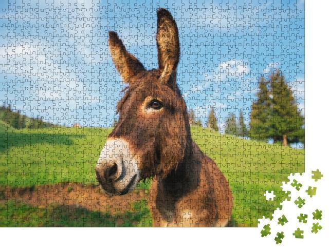 """Puzzle 1000 Teile """"Bild eines lustigen Esels bei Sonnenuntergang in Transsilvanien"""""""