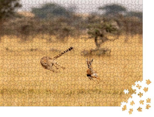 """Puzzle 1000 Teile """"Gepard auf der Jagd"""""""