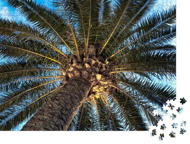 """Puzzle 1000 Teile """"Ansicht von unten: Eine Palme"""""""
