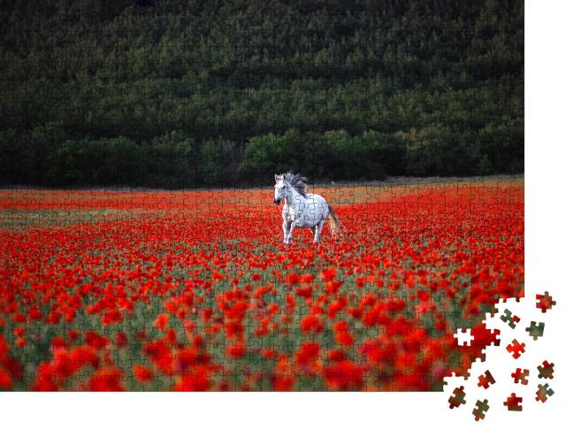 """Puzzle 1000 Teile """"Ein weißes Pferd galoppiert über ein rotes Mohnfeld"""""""