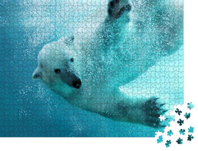 """Puzzle 1000 Teile """"Eisbär, der unter Wasser angreift"""""""