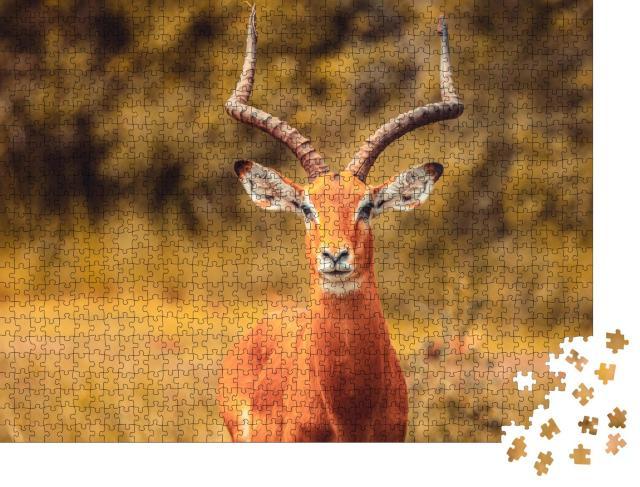 """Puzzle 1000 Teile """"Schöne Impala-Antilope"""""""