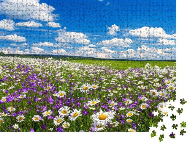 """Puzzle 1000 Teile """"Frühlingslandschaft mit Kamille und blühenden Blumen"""""""