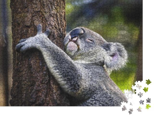 """Puzzle 1000 Teile """"Müder Koala am Baum"""""""