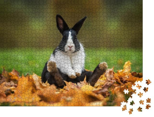 """Puzzle 1000 Teile """"Kleines lustiges Kaninchen sitzt im Herbstlaub"""""""