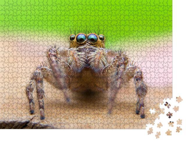"""Puzzle 1000 Teile """"Super-Makro-Fotografie der Springspinne"""""""