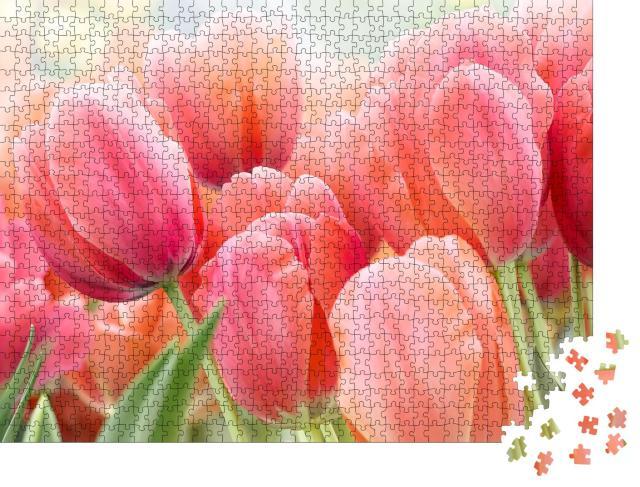 """Puzzle 1000 Teile """"Rosa Tulpen in pastellfarbenen Korallentönen"""""""