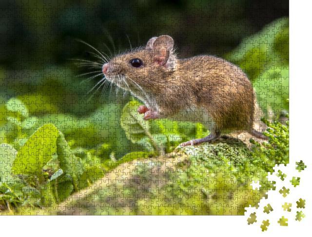 """Puzzle 1000 Teile """"Süße kleine Maus im Wald"""""""
