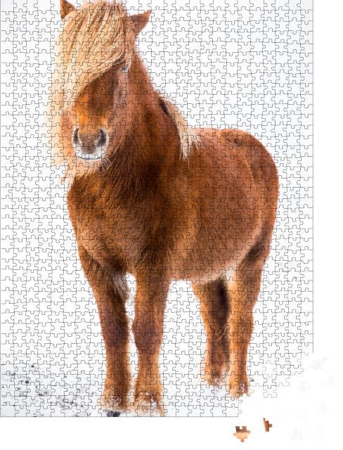 """Puzzle 1000 Teile """"Island-Pferd im Schnee """""""