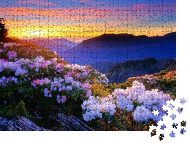 """Puzzle 1000 Teile """"Eine Azalee blüht im Frühling am Hehuan Mountain, Taiwan, Asien"""""""
