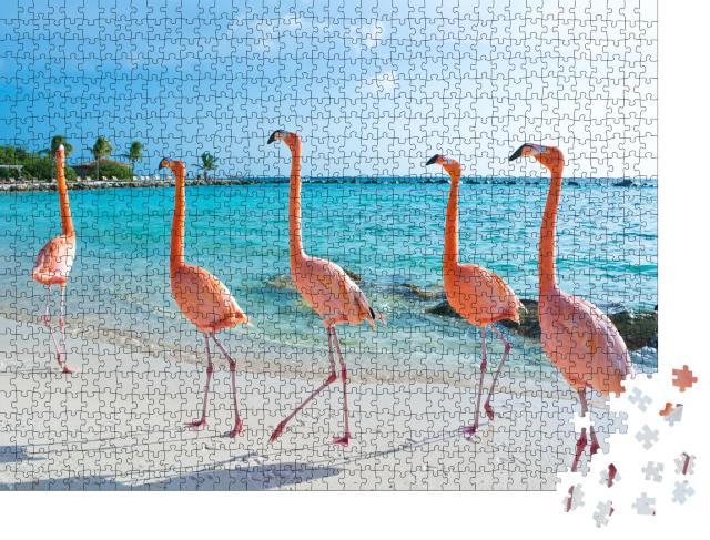 """Puzzle 1000 Teile """"Rosa Flamingo, Insel Aruba"""""""