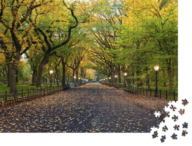 """Puzzle 1000 Teile """"The Mall Bereich im Central Park, New York City"""""""
