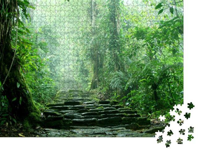 """Puzzle 1000 Teile """"Versteckte Treppe tief im kolumbianischen Dschungel"""""""