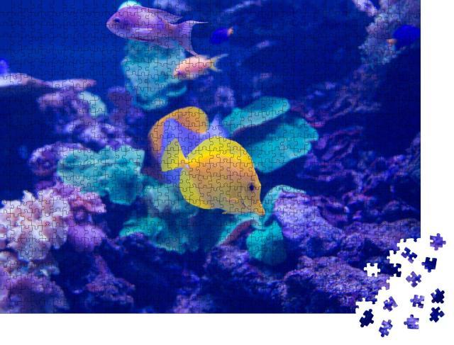 """Puzzle 1000 Teile """"Meeresfische schwimmen im Aquarium"""""""