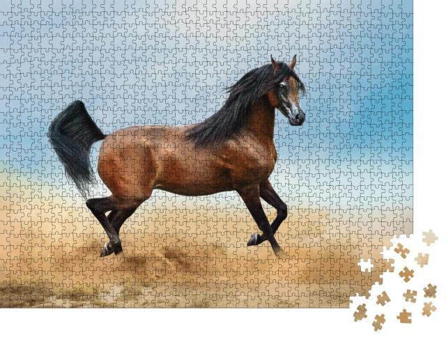"""Puzzle 1000 Teile """"Braunes Araber-Pferd läuft durch die Wüste"""""""
