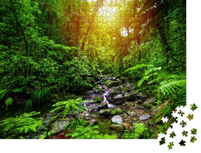 """Puzzle 1000 Teile """"Kleiner Bach im Dschungel von Guadeloupe, Kleine Antillen, Karibik"""""""