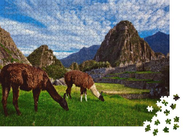 """Puzzle 1000 Teile """"Zwei Lamas in der Inka-Zitadelle von Machu Picchu"""""""