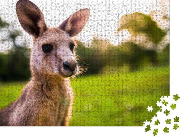 """Puzzle 1000 Teile """"Junges Känguru an der Ostküste Australiens"""""""