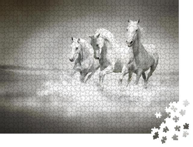 """Puzzle 1000 Teile """"Herde weißer Pferde, die durch Wasser laufen"""""""