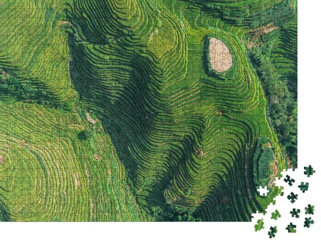 """Puzzle 1000 Teile """"Luftaufnahme von frischen grünen und gelben Reisfeldern, Kreis Longsheng, China"""""""