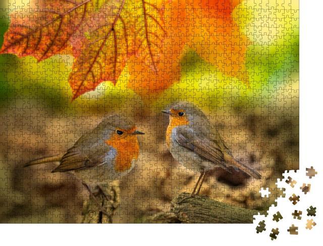 """Puzzle 1000 Teile """"Zwei Rotkehlchen im Herbstwald"""""""