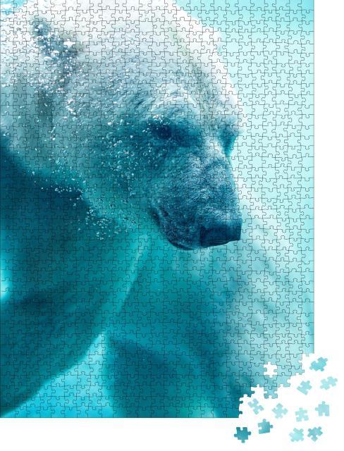 """Puzzle 1000 Teile """"Eisbär unter Wasser mit Blasen"""""""