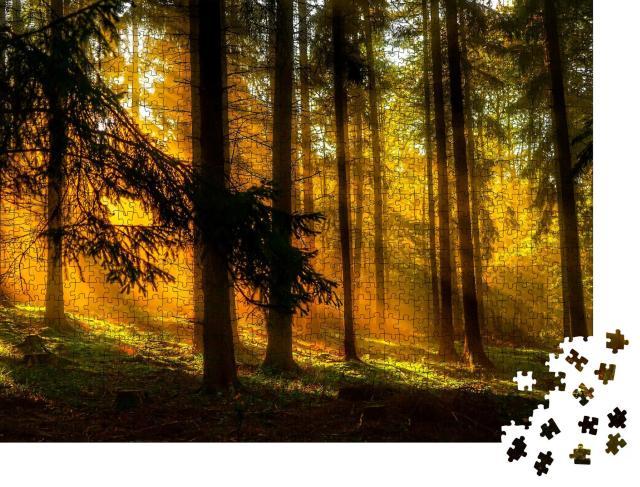 """Puzzle 1000 Teile """"Waldszene: Sonnenuntergang, Sonnenstrahlen in der tiefen Wildnis"""""""