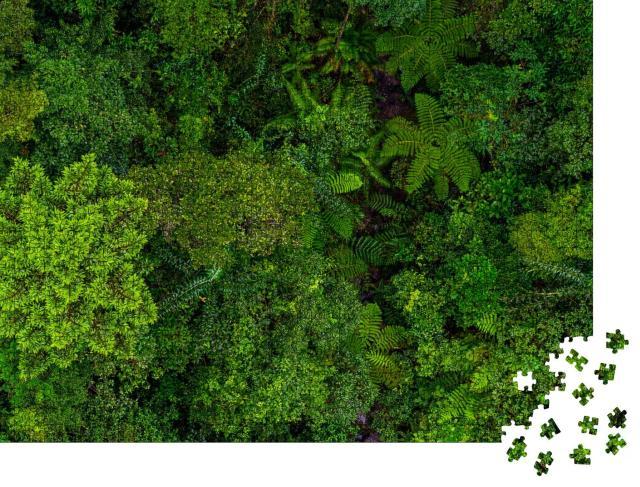 """Puzzle 1000 Teile """"Das grüne Dach des Regenwaldes von oben"""""""